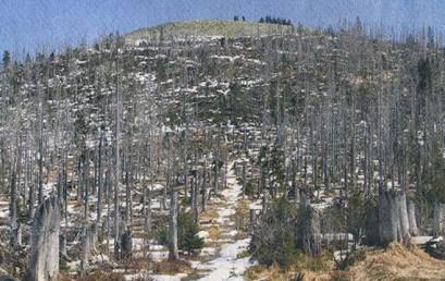 Eine Öko-Katastrophe?