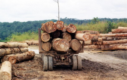 Diamanten, Herrscher, Holz & Co. – Afrikas natürliche Ressourcen im Spannungsfeld von Landdegradation und wirtschaftlicher Entwicklung