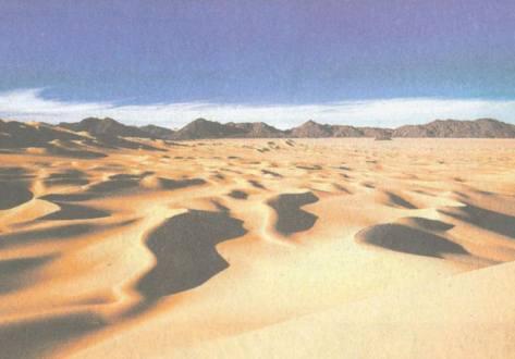 Durch die Wüsten unserer Welt