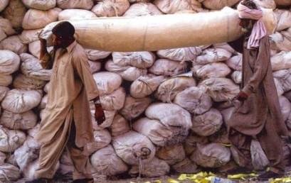 Katastrophen, Kriege & Konflikte