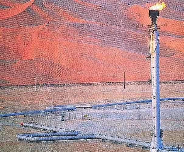 Wirtschaftswunder Wüste