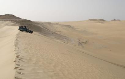 Die Ostsahara – Zustand und Wandel im größten Trockenraum der Erde in den letzten 30.000 Jahren