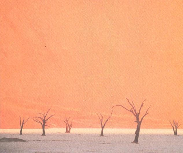 Die Wüsten dieser Erde