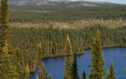 Wasser und Wald: Kanadische Ressourcen – Globale Konfliktfelder