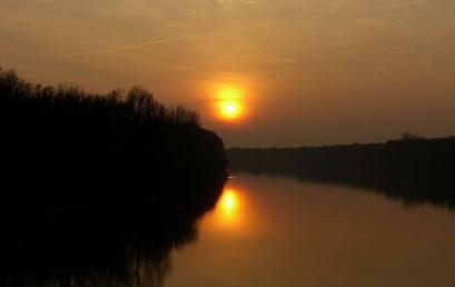 Europäischer Naturschutz in Passau – die EU-Life-Projekte an Inn und Donau als Beiträge zur Erhaltung der Biodiversität