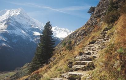Die Verwilderung der Alpen – ein besonderer Lebensraum zwischen Verstädterung, Freizeitdruck und Wildnis