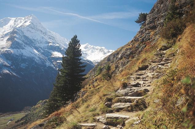 Verwilderung der Alpen