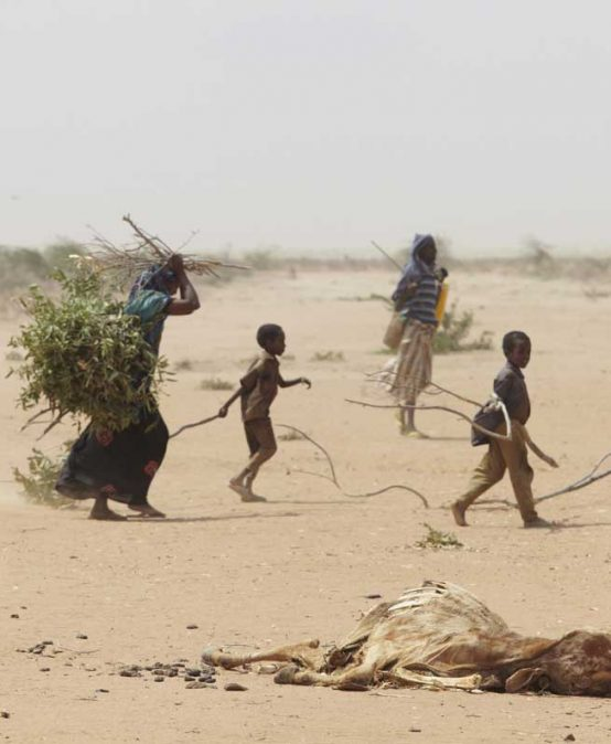 Umweltflüchtlinge? Migration im Zeitalter des Klimawandels