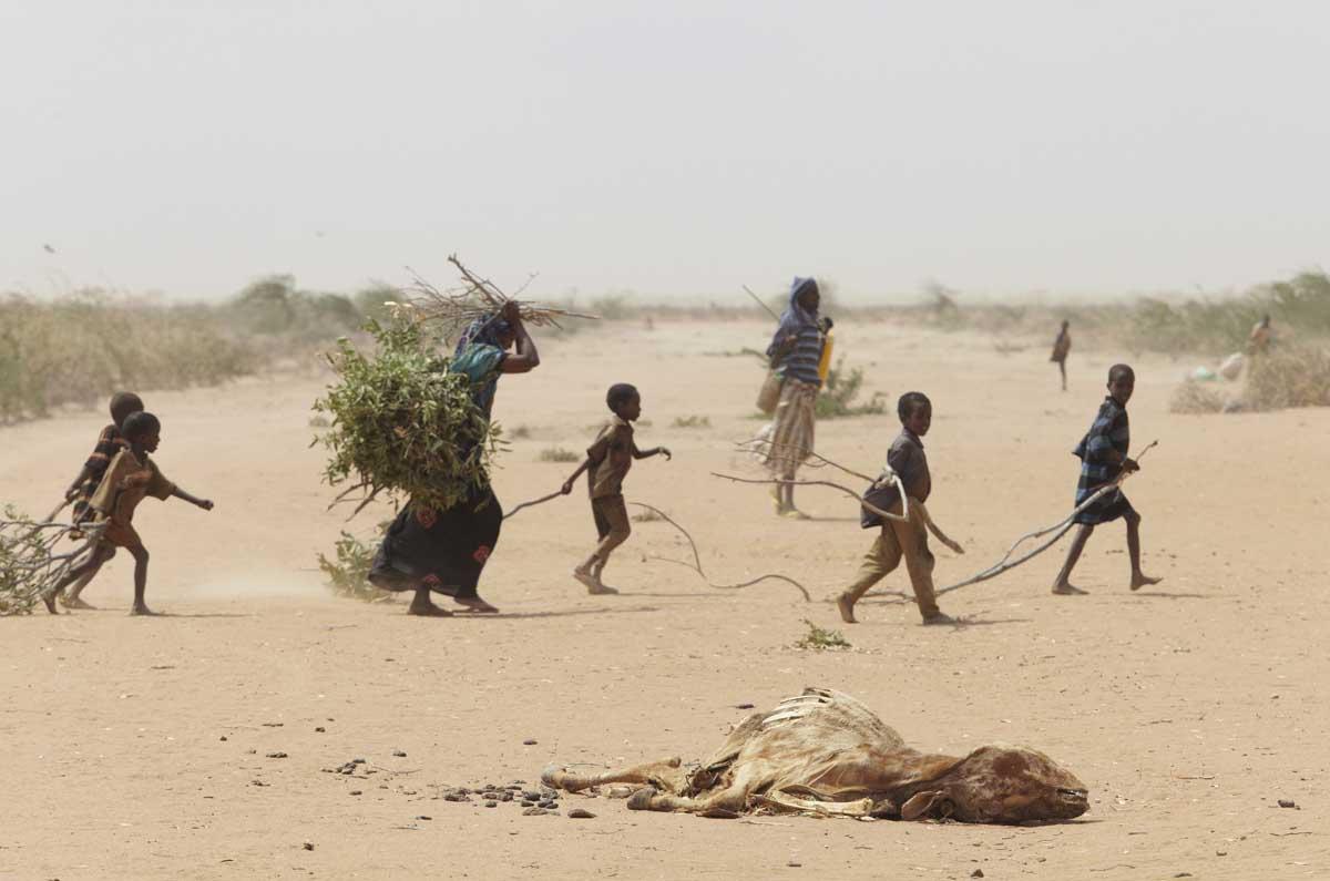 Flucht vorm Klimawandel