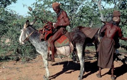 Der Kampf der Himba-Nomaden gegen Infrastrukturprojekte im Norden Namibiens