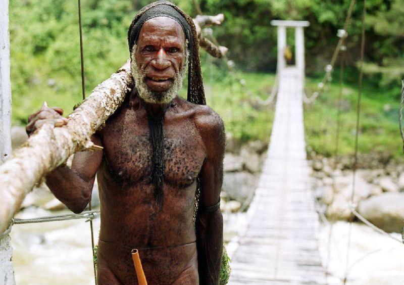 Prähistorie bis in unsere Zeit: Zur Geschichte und Kultur der Menschen Melanesiens