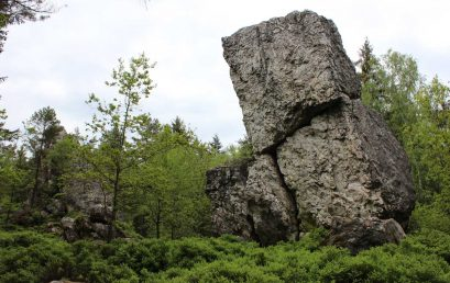 Reise in die Vergangenheit – 900 Millionen Jahre Erdgeschichte im Bayerischen Wald