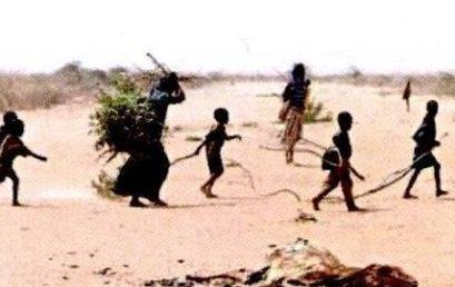 Migration im Zeichen des Klimawandels