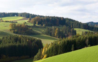 """Eine Region nutzt ihre Potentiale: 25 Jahre erfolgreiche Regionalentwicklung am Beispiel der """"Mühlviertler Alm"""""""