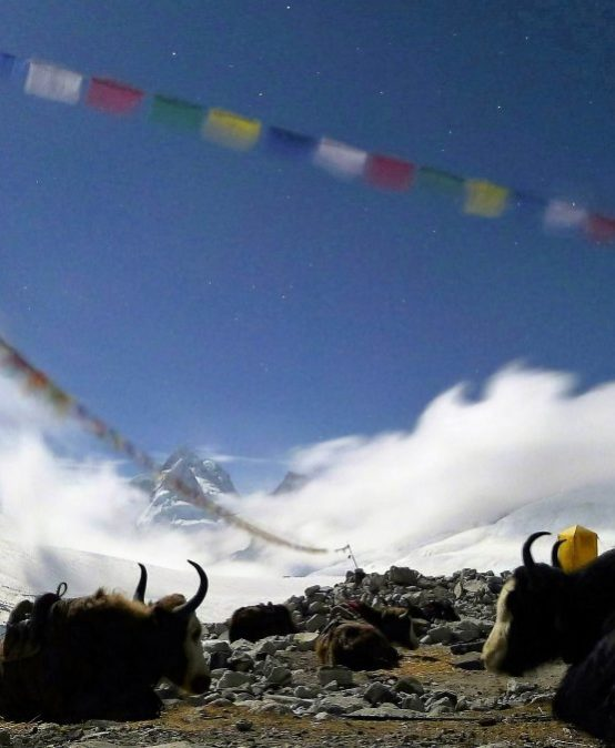 Auf der Suche nach dem Ort des ewigen Glücks: Kultur, Tourismus und Entwicklung im Himalaya